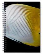Auriga Butterfly Fish Spiral Notebook