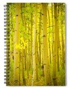 Autumn Aspens Vertical Image  Spiral Notebook