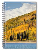 Autumn At Huntington Reservoir - Wasatch Plateau - Utah Spiral Notebook