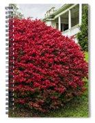 Autumn Blush Spiral Notebook