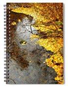 Autumn Collage Spiral Notebook