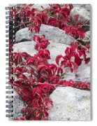Autumn Color Is Red Spiral Notebook
