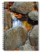 Autumn Colors Reflected In Pool Of Water Spiral Notebook