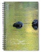Autumn Creek Reflections Spiral Notebook