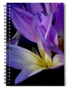 Autumn Crocus Spiral Notebook