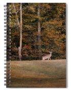 Autumn Deer Spiral Notebook