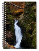 Autumn Falls Spiral Notebook