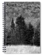 Autumn Field Bw Spiral Notebook