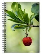 Autumn Fruits In Red Spiral Notebook