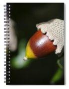 autumn fruits - Mediterranean acorn macro Spiral Notebook