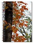 Autumn Glory At Tannehill Spiral Notebook
