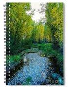 Autumn Hue  Spiral Notebook