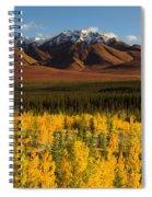 Autumn In Duke Creek Spiral Notebook