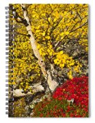 Autumn In Finland Spiral Notebook