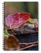 Autumn Ivy In Red Spiral Notebook