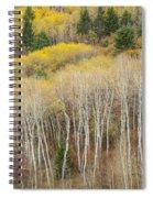 Autumn Layers Spiral Notebook