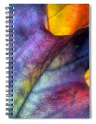 Autumn Leaf Abstract 2 Spiral Notebook
