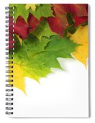 Autumn Leaves In Colour Spiral Notebook