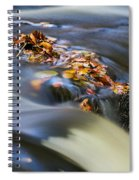 Autumn Leaves In Water Spiral Notebook