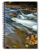 Autumn Leaves In Water II Spiral Notebook