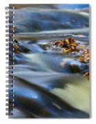 Autumn Leaves In Water IIi Spiral Notebook
