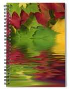 Autumn Leaves In Water With Reflection Spiral Notebook