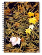 Autumn Leaves On Straw On Water Spiral Notebook