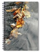 Autumn Leaves Tiny Dam Spiral Notebook