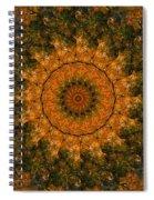 Autumn Mandala 1 Spiral Notebook