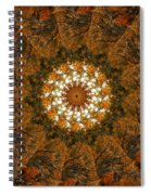 Autumn Mandala 4 Spiral Notebook