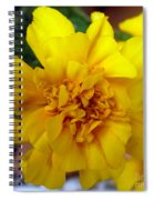 Autumn Marigold 2 Spiral Notebook