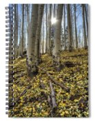 Autumn Memoirs  Spiral Notebook