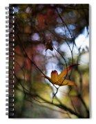 Autumn Mystere Spiral Notebook