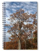 Autumn Oaks White Clouds Spiral Notebook