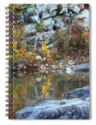 Autumn On The Black River 1 Spiral Notebook