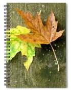 Autumn Pair Spiral Notebook