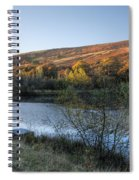 Autumn Pond 3 Spiral Notebook