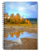 Autumn Puddles Spiral Notebook
