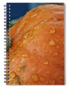 Autumn Rain Drops Spiral Notebook