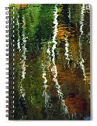 Autumn Reflections 1 Spiral Notebook