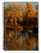 Autumn Reflections Painterly Spiral Notebook