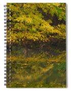 Autumn Reflections_0138 Spiral Notebook