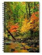 Autumn Reflects Spiral Notebook