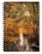 Autumn Riches 2 Spiral Notebook