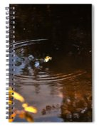 Autumn Rings Spiral Notebook