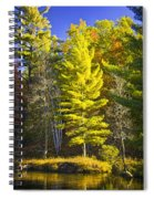 Autumn Scene Of Colorful Trees On The Little Manistee River In Michigan No. 0855 Spiral Notebook
