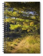 Autumn Scene Of The Little Manistee River In Michigan No. 0882 Spiral Notebook