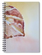 Autumn Shimmer Spiral Notebook