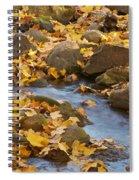 Autumn Slipping Away 0437 Spiral Notebook