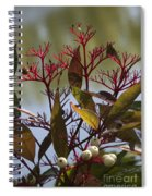 Autumn Snow Berry Bush Spiral Notebook